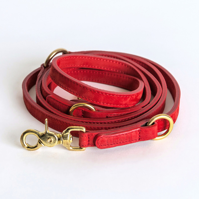 Dog Lead - Tiergarten Nubuck Cherry Red Small www.hugoandotto.com