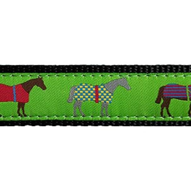 Race Horse 3/4 & 1.25 inch Dog Collar, Harness