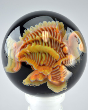BUCK - Angler Fish Implosion Marble w/ Piranha Fish Millie on Back #1 - NOT FOR SALE
