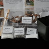 Celebration Orchid Transplanting Kit (Paph)