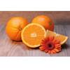 Orange-SC
