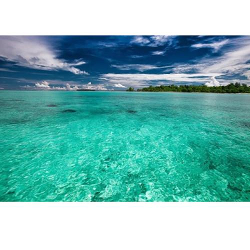 Island Flavoring-SC