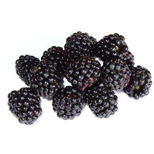 Blackberry-SC