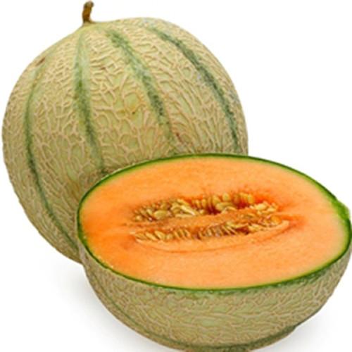 Cantaloupe-TFA Gallon