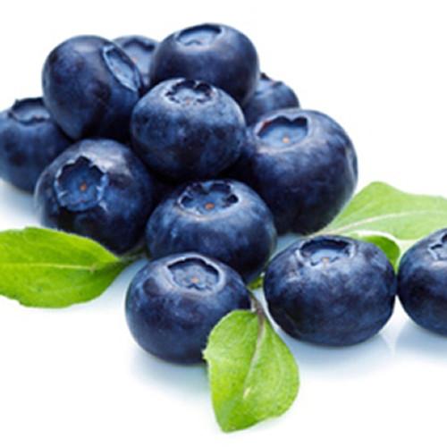 Blueberry (Extra) Gallon