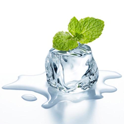 Wintergreen - TFA Gallon