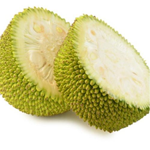 Jackfruit Gallon