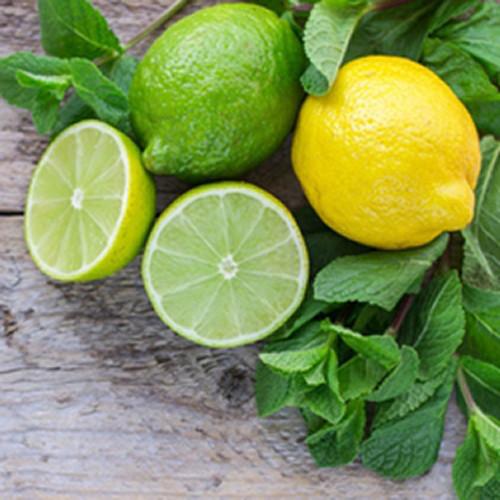 Lemon Lime-TFA Gallon  (Bulk/Restricted Shipping)