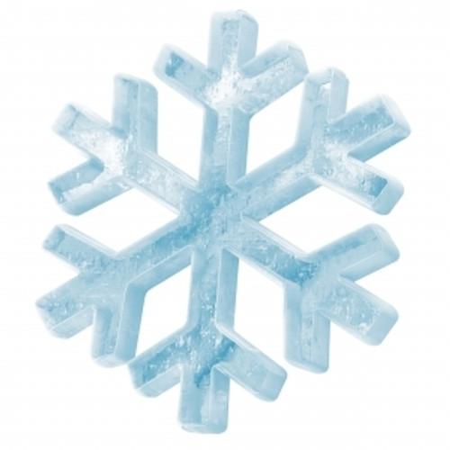 Arctic Winter (Menthol)-FA-Gallon