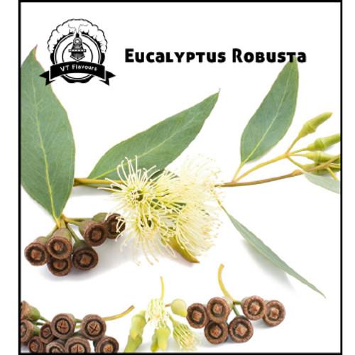 Eucalyptus Robusta-VT