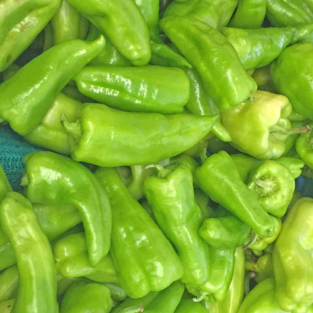 Cubanelle Sweet Pepper Seeds - (Capsicum annuum)