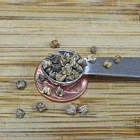 Lutz Green Leaf (Winter Keeper) Beet Seeds - (Beta vulgaris)