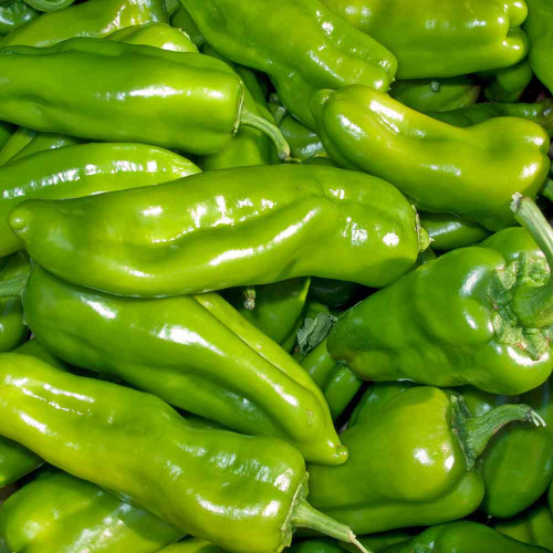 Cubanelle Sweet Pepper Seeds - (Capsicum annuum)