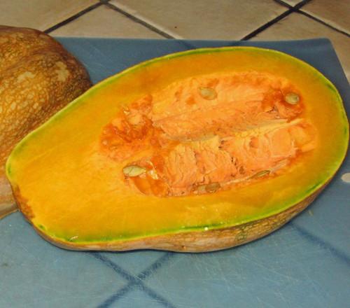 Papaya Squash - (Cucurbita moschata)