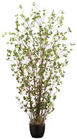 """72"""" Mini Leaf Plant in Pot Green"""