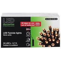 LED Twinkle Lights - 5.7' w/Black Wire