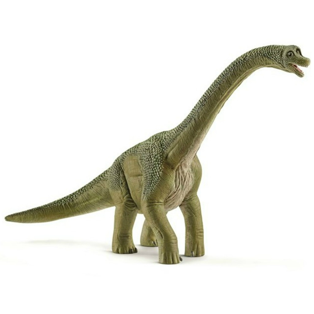 Brachiosaurus 2017