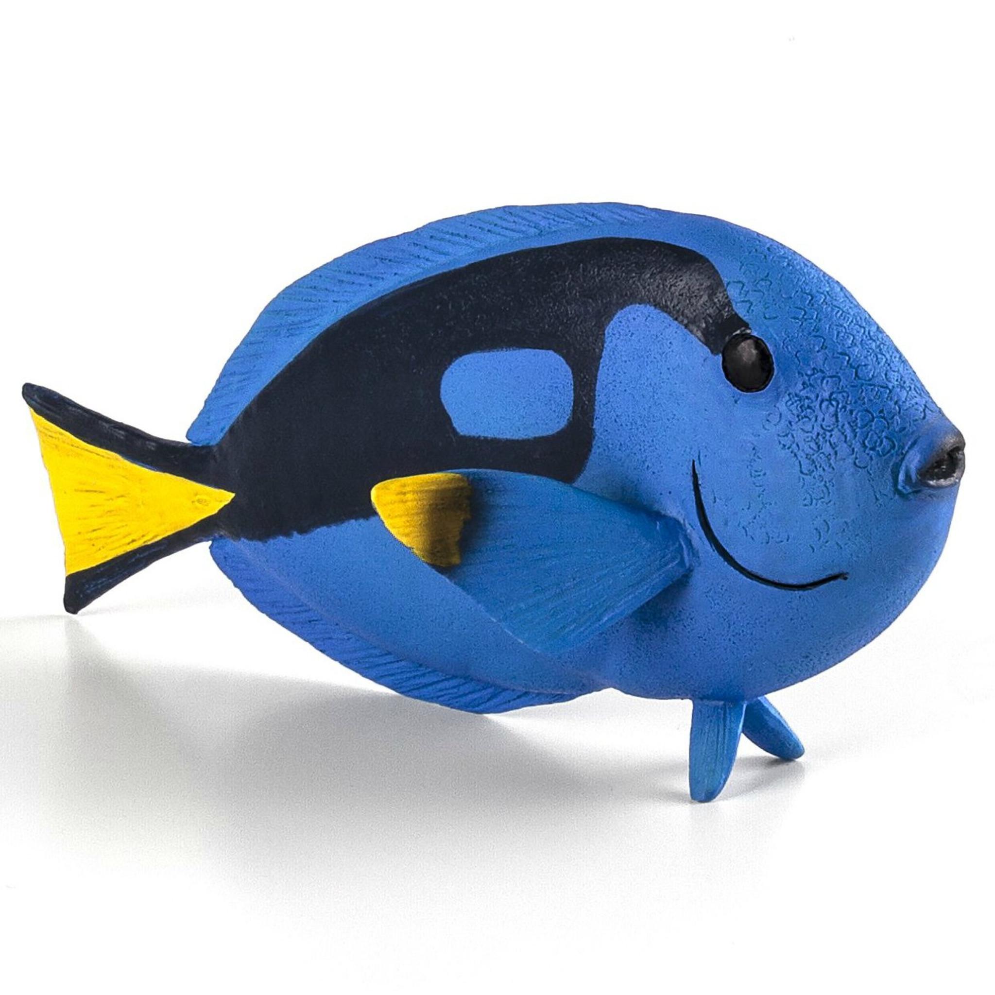 Mojo blue tang fish 387269 free shipping for Blue tang fish facts