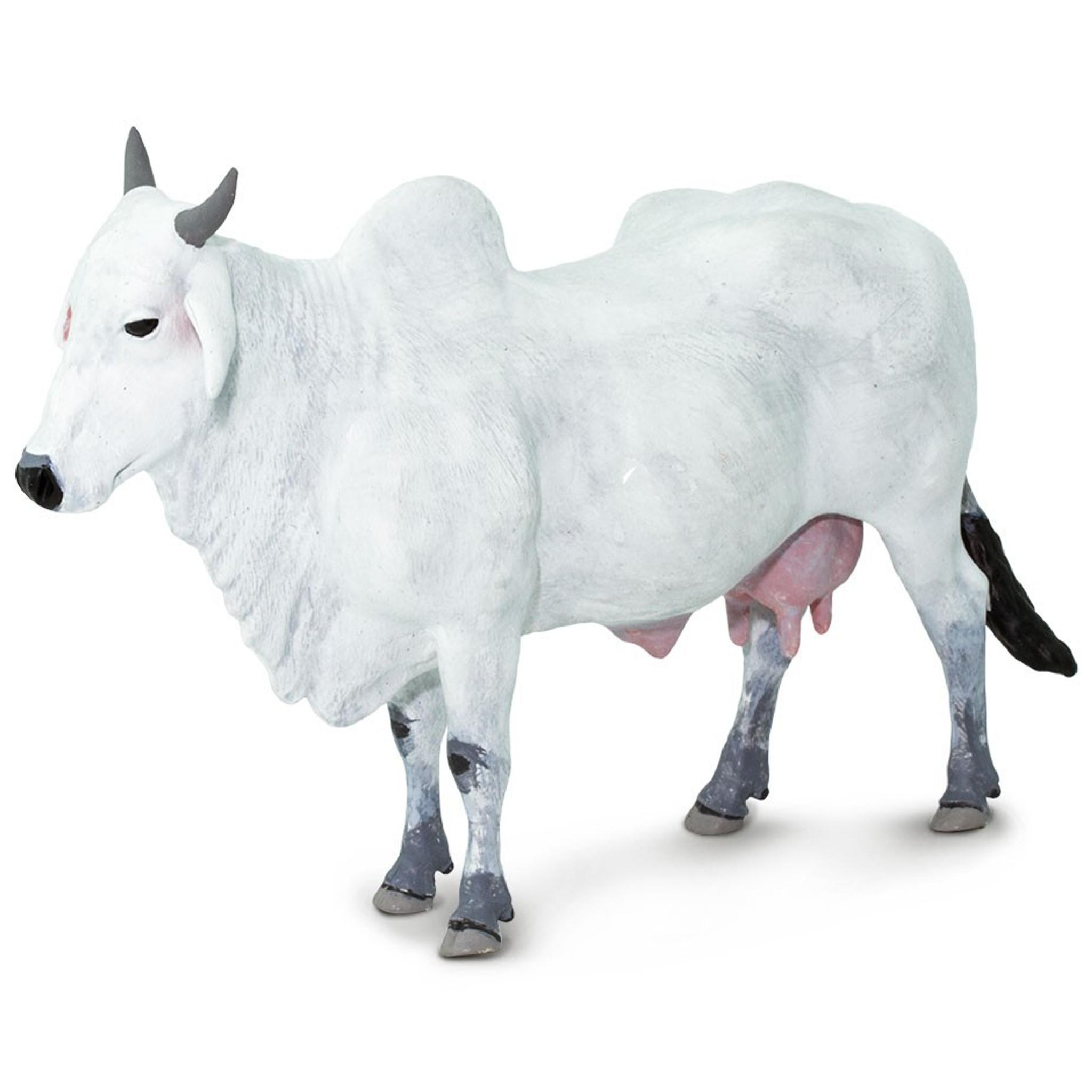 safari ltd ongole cow 100150 safari australia