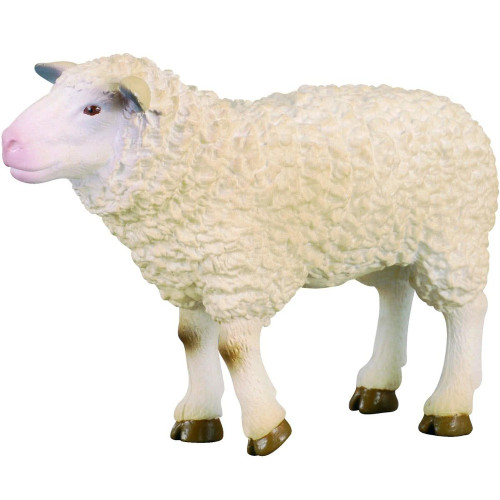 Sheep CollectA