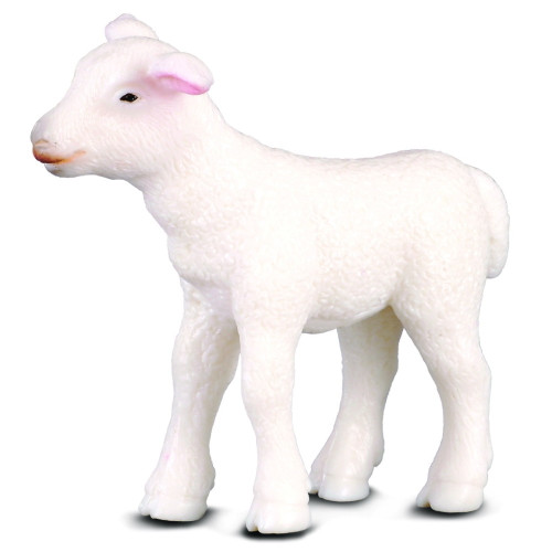 Lamb CollectA