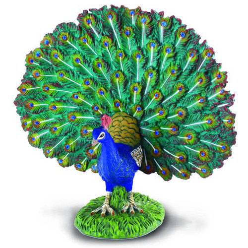 Peacock CollectA