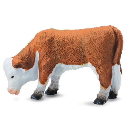 Hereford Calf Grazing CollectA