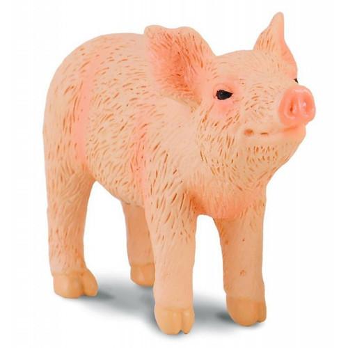 Piglet Smelling