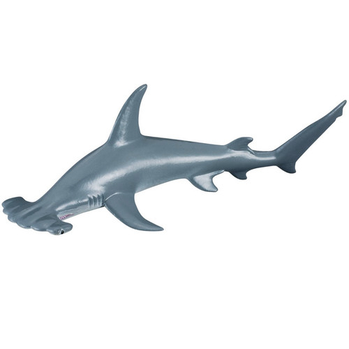 Scalloped Hammerhead Shark CollectA