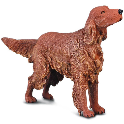Irish Red Setter CollectA