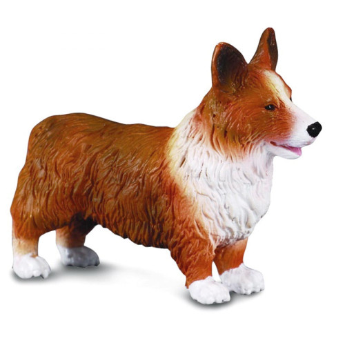 Welsh Corgi CollectA