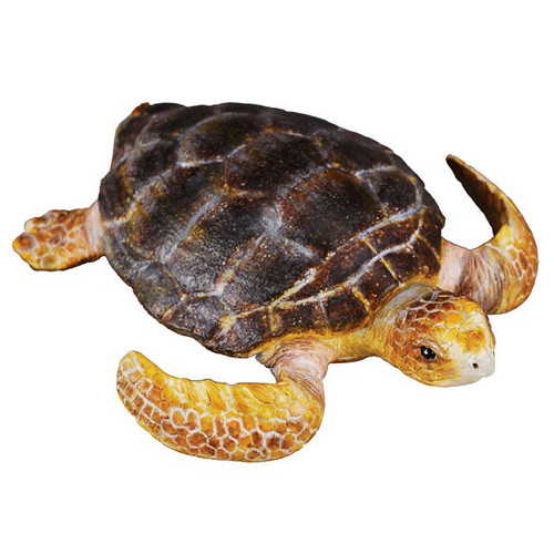 Loggerhead Turtle CollectA