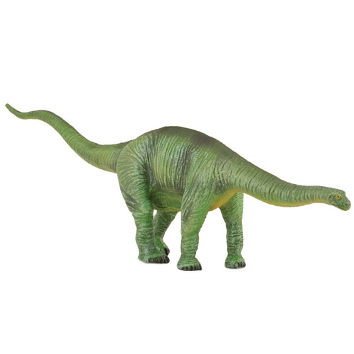 Cetiosaurus CollectA
