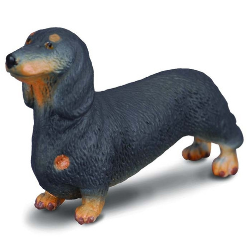 Dachshund CollectA