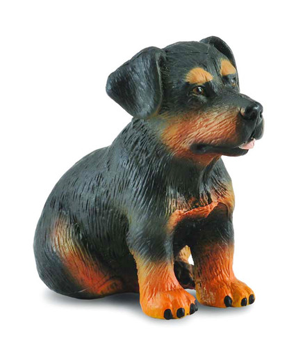 Rottweiler Puppy CollectA