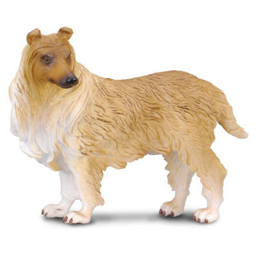Rough Haired Collie CollectA