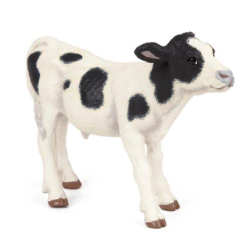 Piebald Calf
