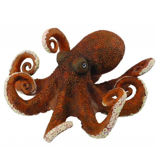 Octopus CollectA