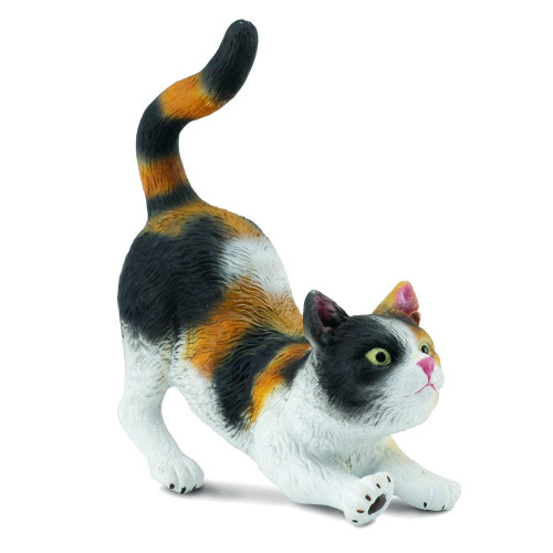 3 Colour House Cat Stretching CollectA
