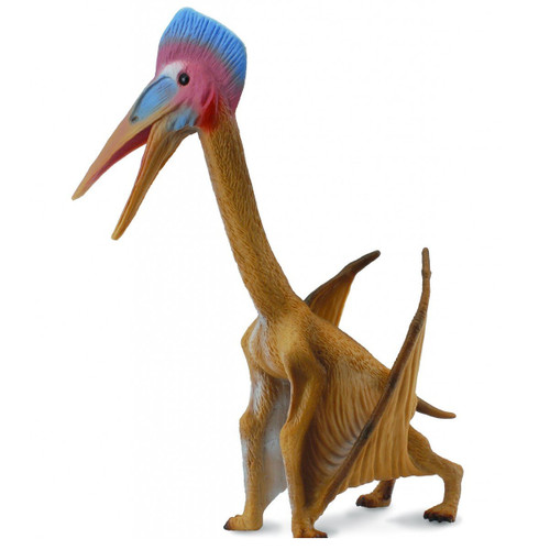 Hatzegopteryx CollectA