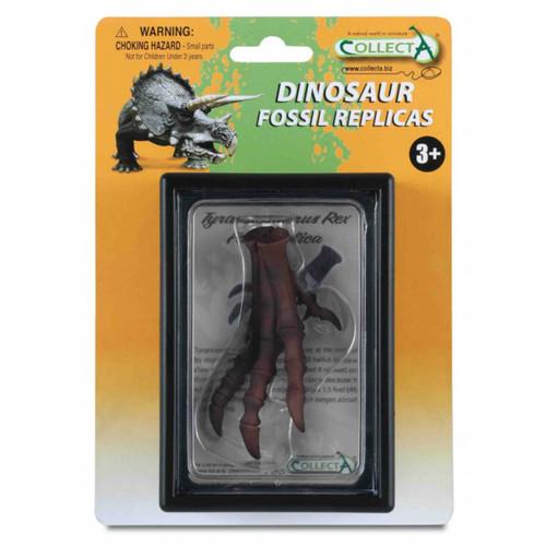 Foot Replica of T-Rex