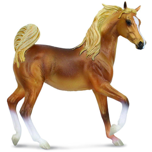 Arabian Mare Golden Chestnut