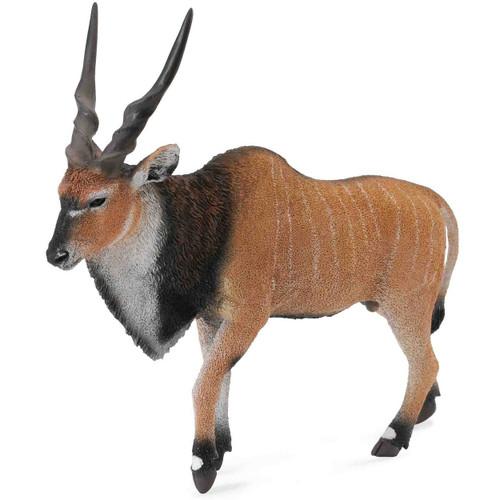 Giant Eland Antelope