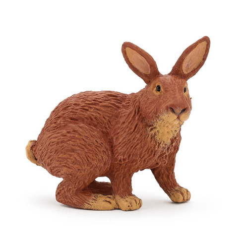 Rabbit Brown Papo