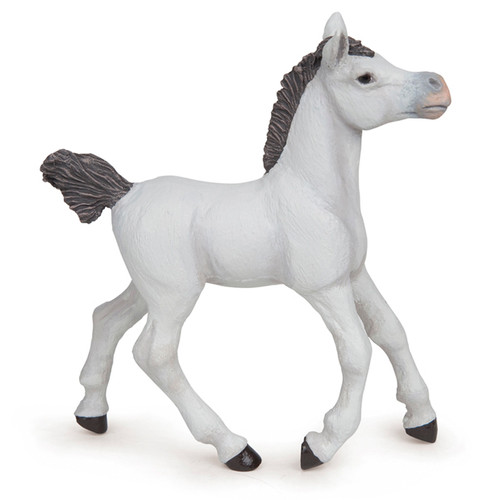 Arab Foal White Papo