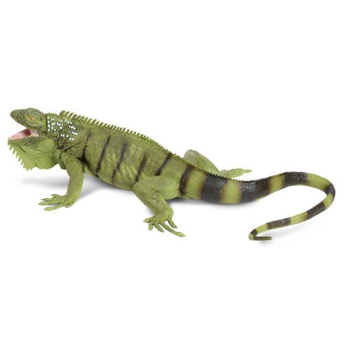Iguana Jumbo