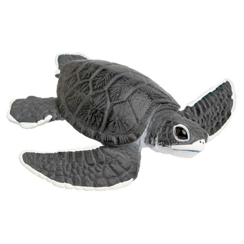 Sea Turtle Baby Jumbo