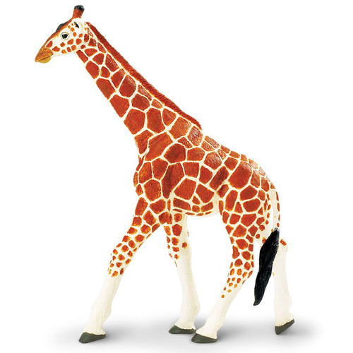 Reticulated Giraffe Jumbo