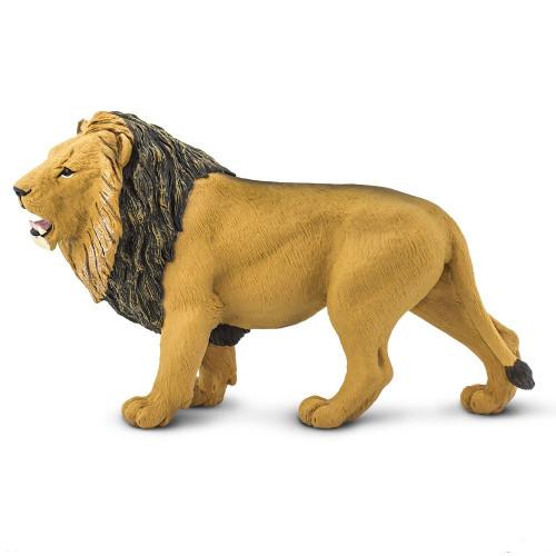 Lion Jumbo