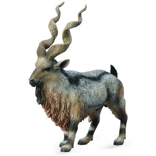 Tadjik Markhor Middle Eastern Wild Goat CollectA